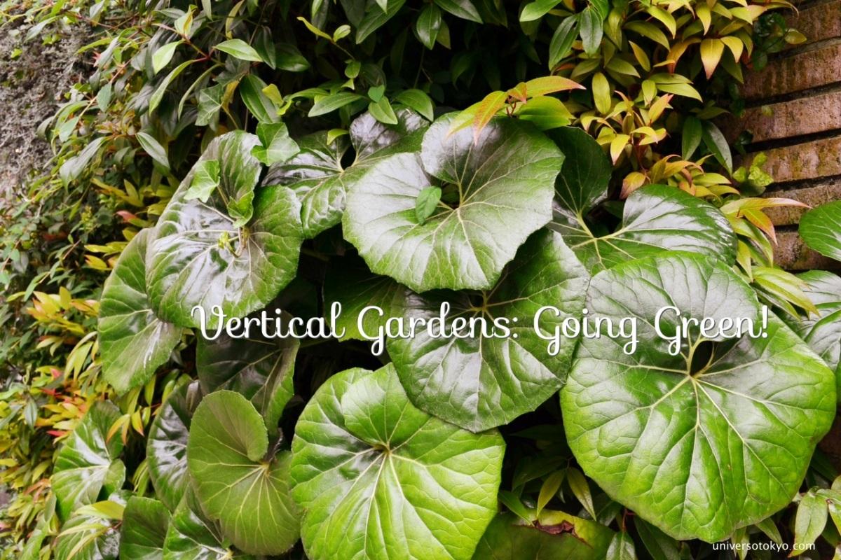 Vertical Gardens: Going Green!