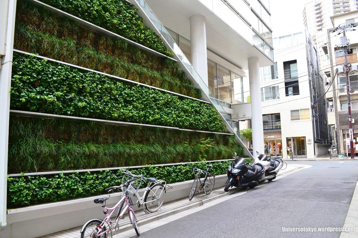 Vertical Gardens: Going Green! | UNIVERSOTOKYO