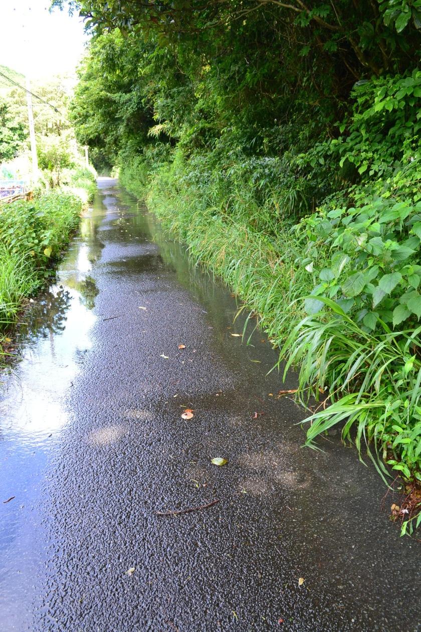 Shimoda, narrow roads around the house