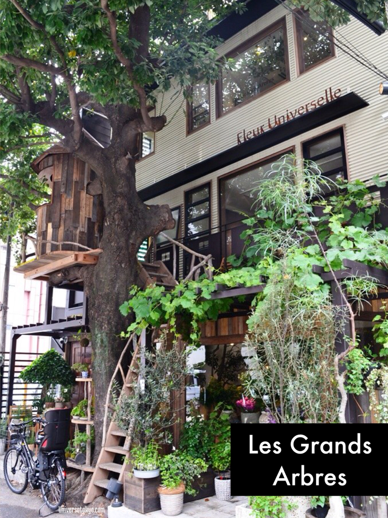 """Beautiful """"Les Grands Arbres"""" in Hiroo... you can't miss it!"""