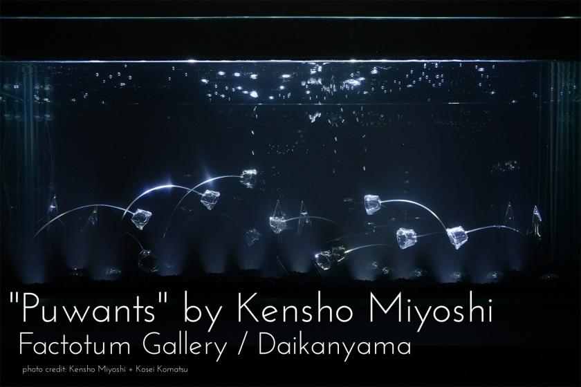 Cover photo by Kensho Miyoshi/Kosei Komatsu