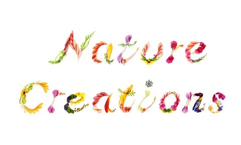 nature creation