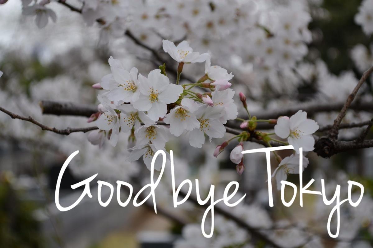 Goodbye Tokyo, Goodbye Universotokyo 「さよなら東京, さよなら Universotokyo」