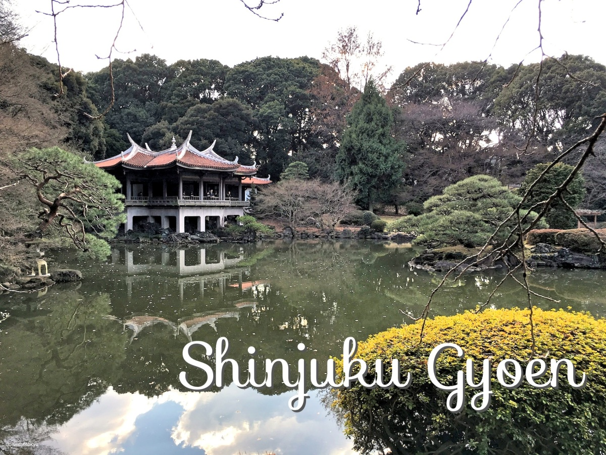 Shinjuku Gyoen National Garden 「新宿御苑 / 新宿」
