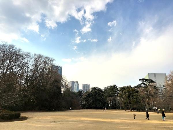 shinjuku park